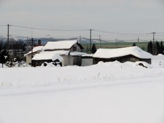 0220-03-asahi.jpg