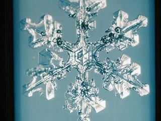0225-14-snow.jpg