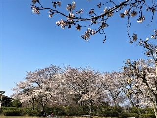 0408-03-kagata.jpg