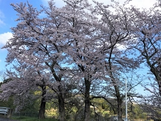 0411-03-kagata.jpg