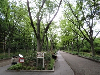 0620-01-utubo.jpg