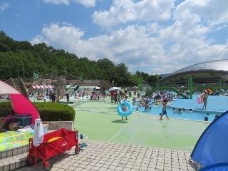 0815-01-pool.jpg