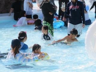 0815-08-pool.jpg