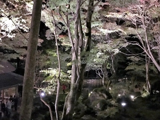 1125-08-kyorin.jpg